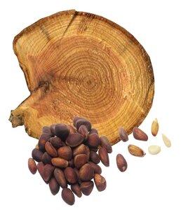 Сердцевина кедровой древесины аромашарм