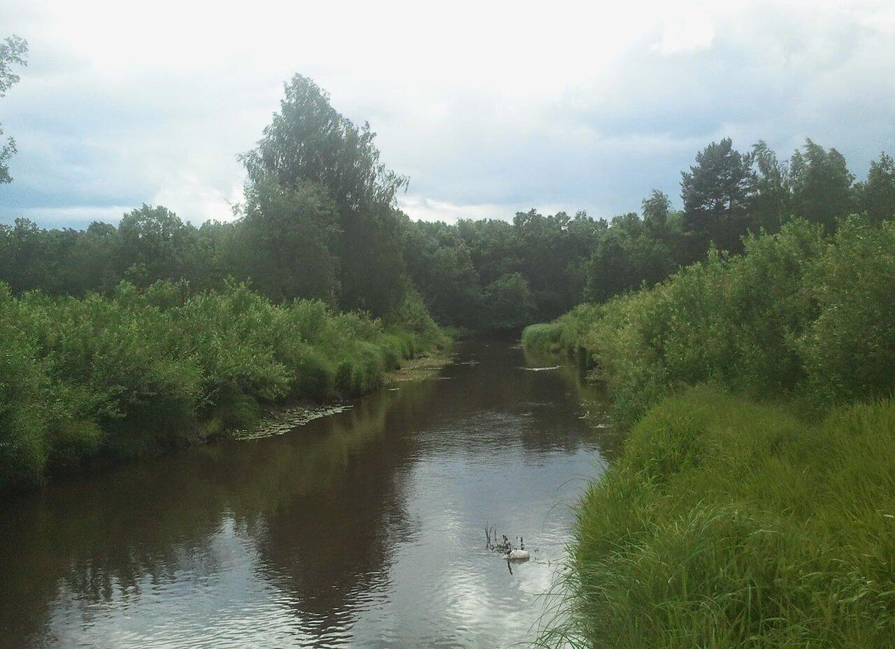 река цна московская область рыбалка