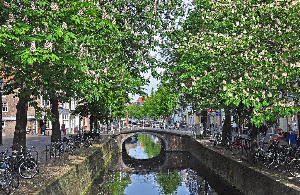 Голландская весна