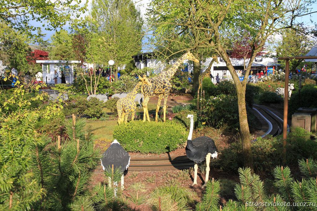 Животные из кубиков лего в парке Леголенд, Дания