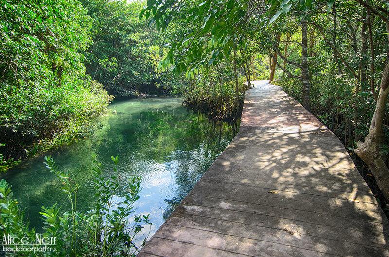 Деревянные настилы-дорожки в парке Та Пом