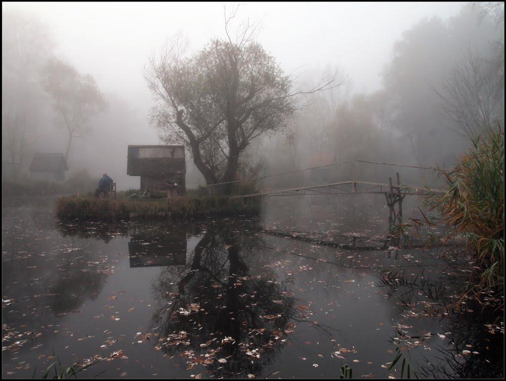 Заброшенная рыбацкая деревушка под Будапештом