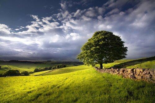 обработка пейзажной фотографии. техника пейзажной фотографии