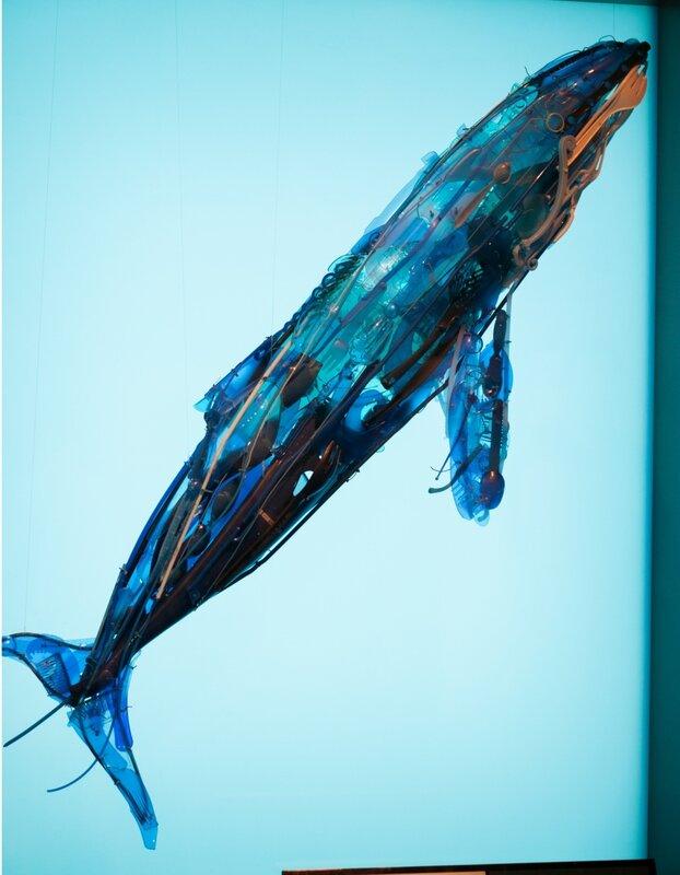 monterey bay aquarium: whale made of garbage