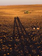 В первую часть маршрута по Иордании вошли не посещаемые вело...