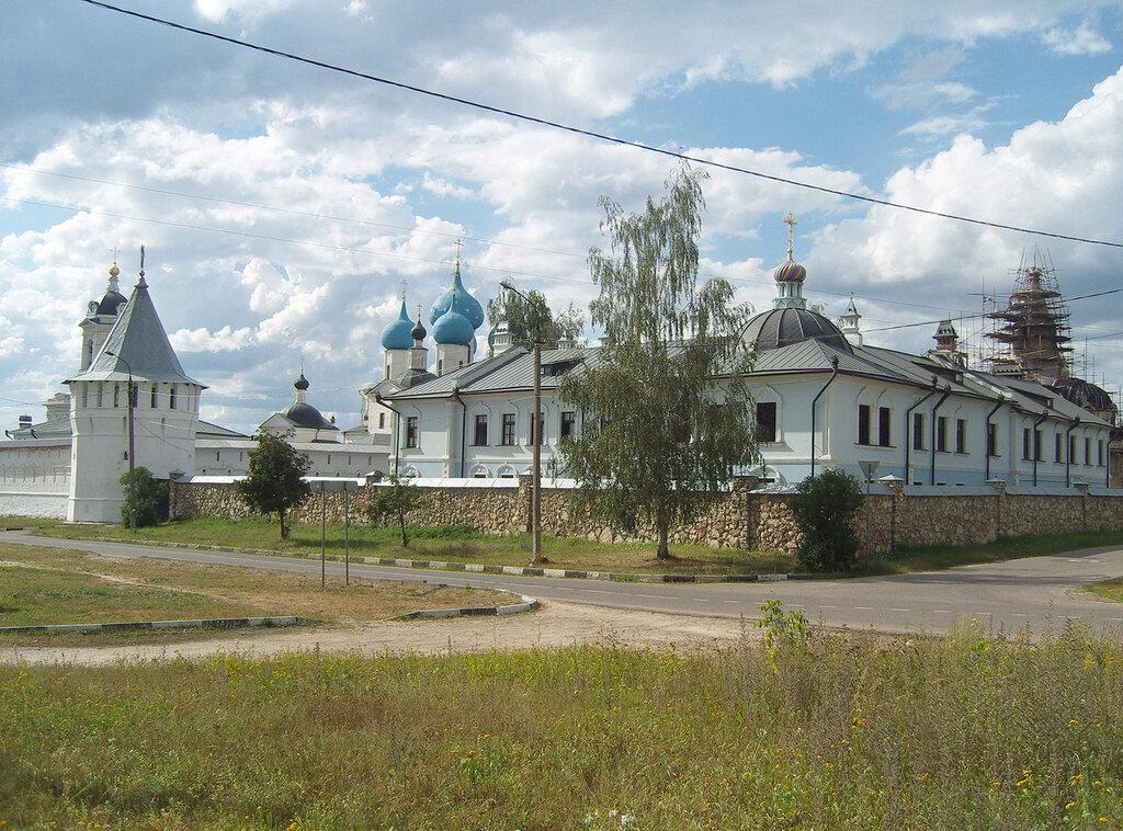 в Серпухове. Плакучая береза и Высоцкий монастырь