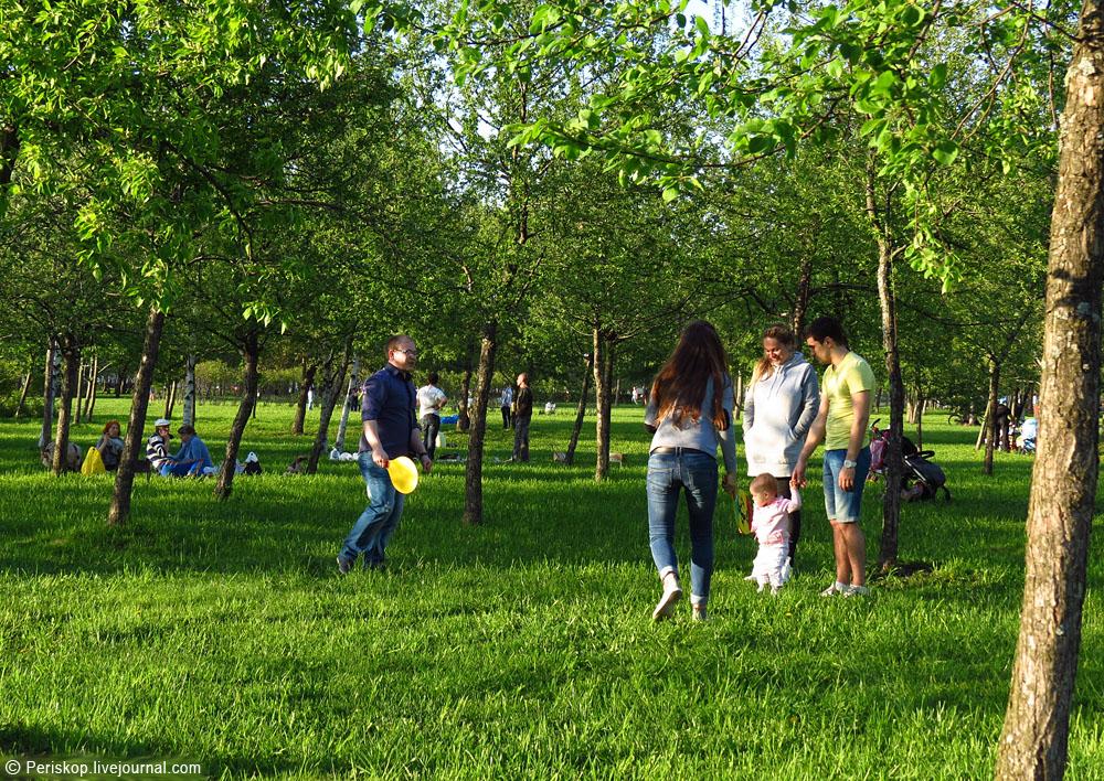 Майский вечер в парке 300-летия