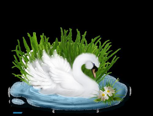 Лебедь5.png