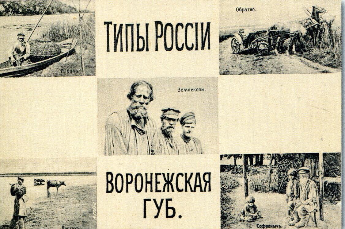Типы Воронежской губернии