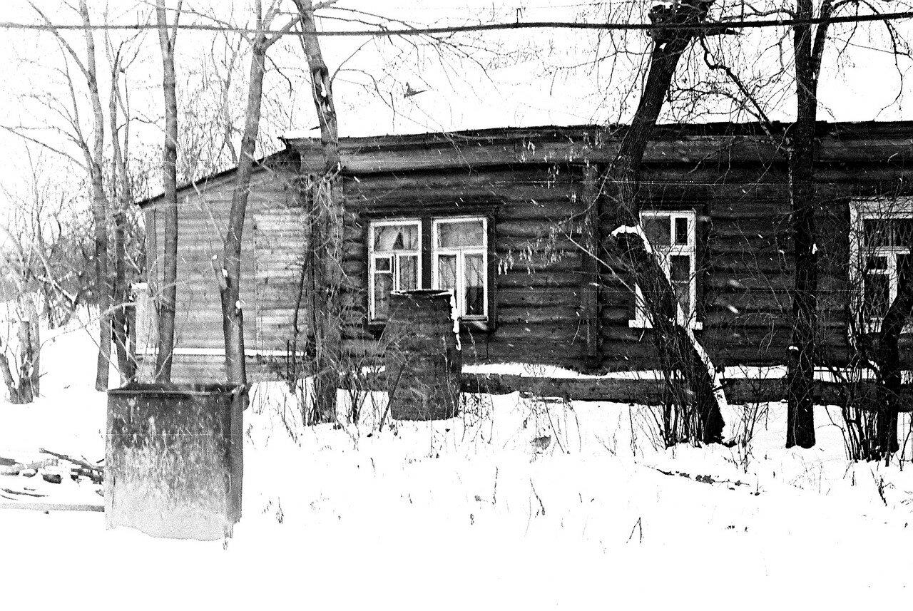 1981. Рядом с улицей Нижняя. Последняя крестьянская изба с воротами. Вид со стороны парка. На снимке фрагмент избы