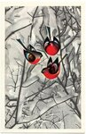 Открытка поздравление Снегири на фото картинка