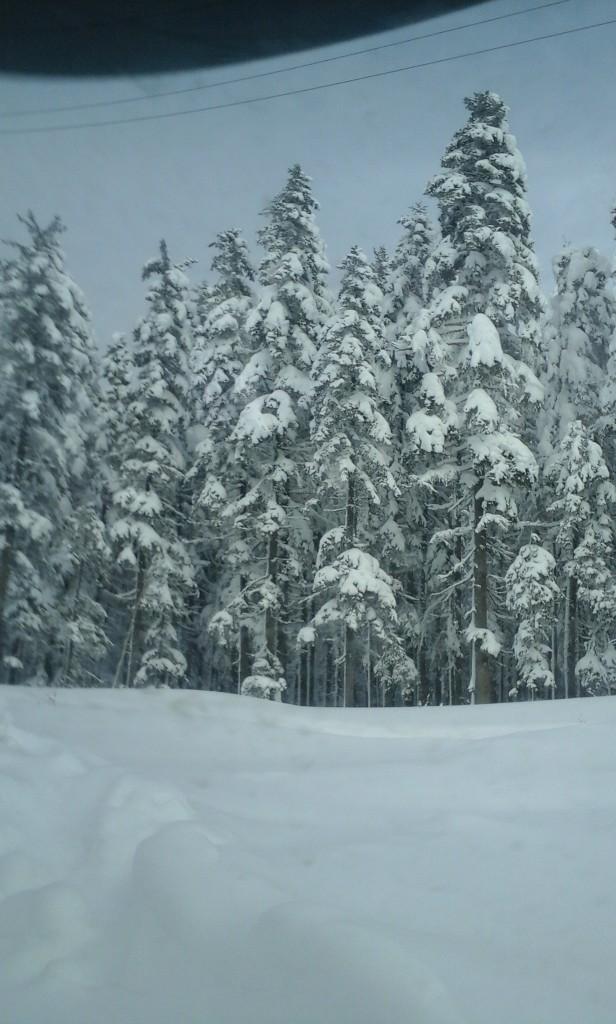 Поездка на озеро Амут, Хабаровский край
