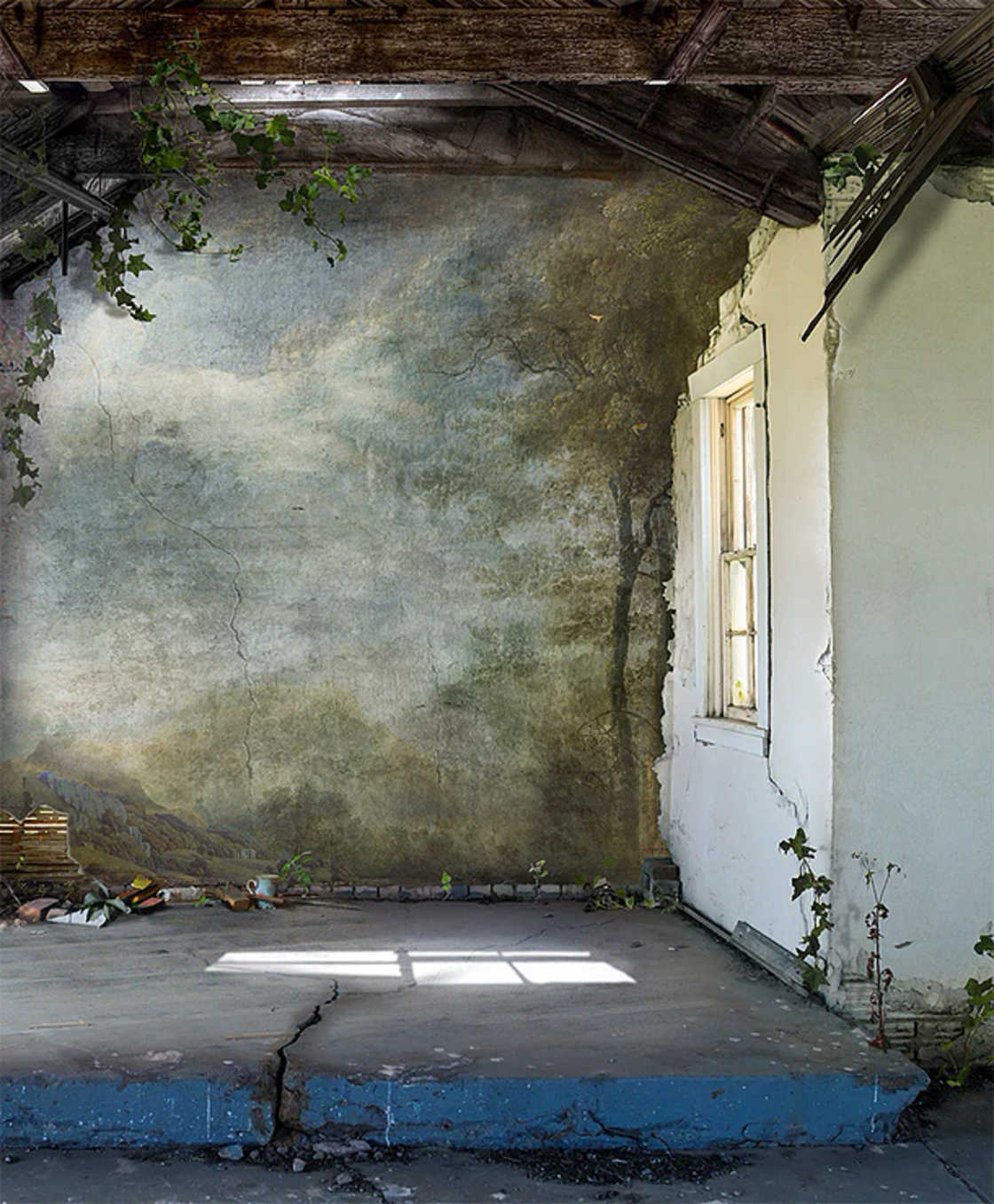 Nature Interiors - When nature invades abandoned places