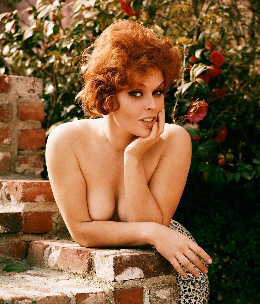 Ginger harrison nude playboy