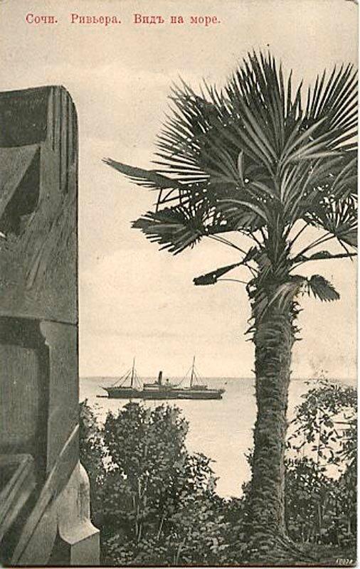 «Кавказская Ривьера». Вид на море