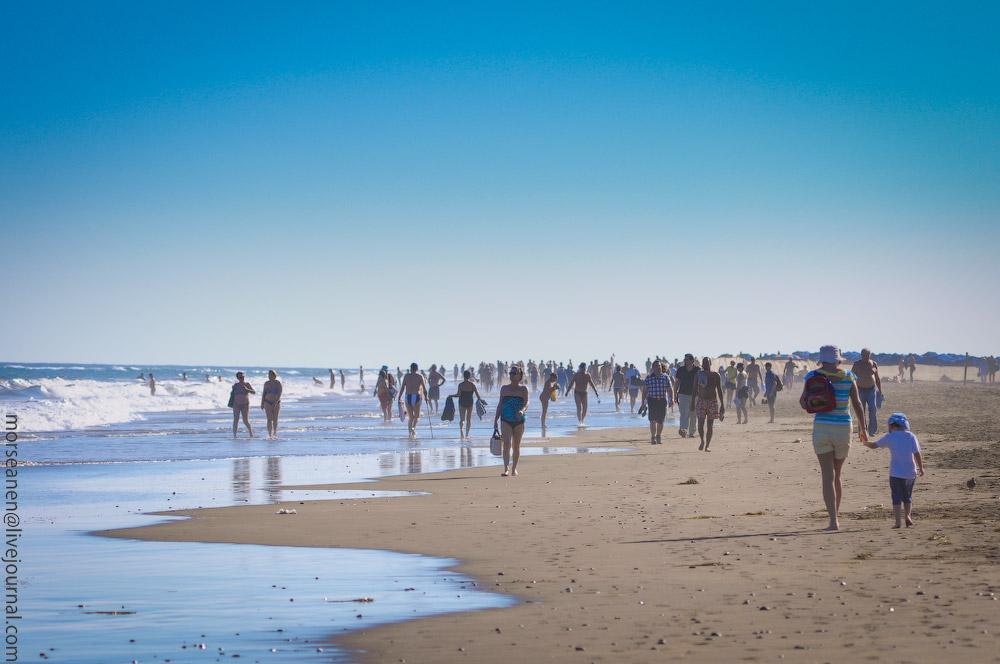 Playa-Ingles-(4).jpg