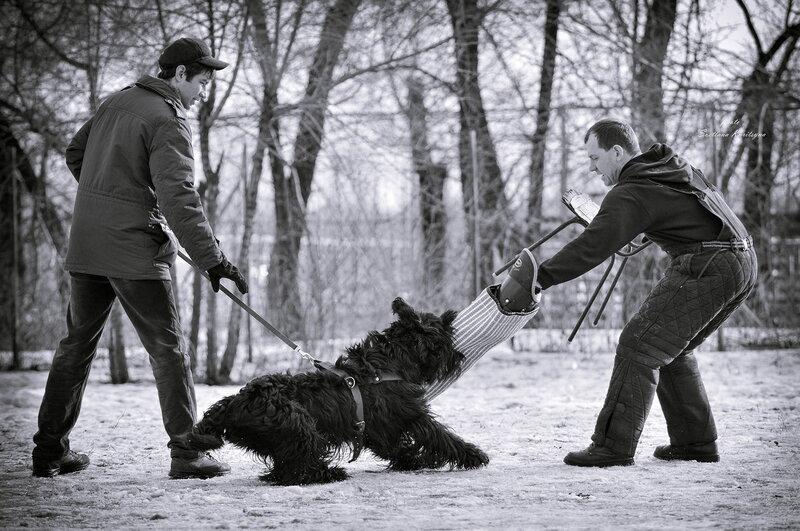 http://img-fotki.yandex.ru/get/9757/22682307.fd/0_b68f8_1a670d66_XL.jpg