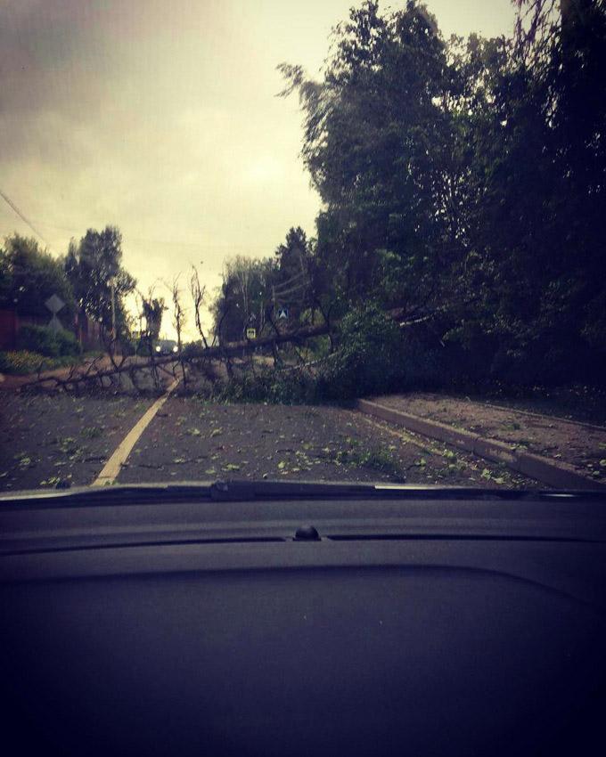 Более тысячи человек и 170 единиц техники задействованы в ликвидации последствий урагана в Моск