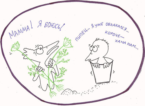 http://img-fotki.yandex.ru/get/9757/8566602.e/0_106095_b594c43c_L.bmp