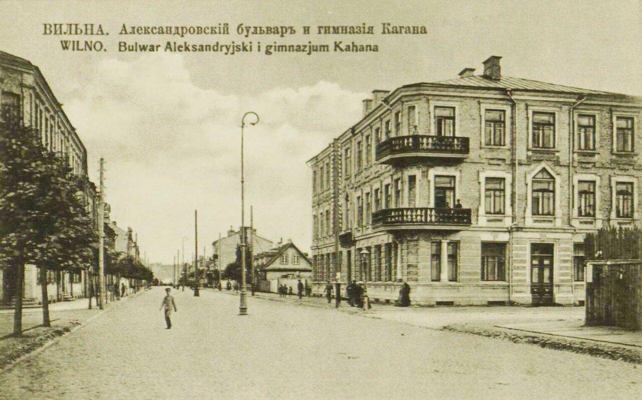Александровский бульвар и гимназия Кагана