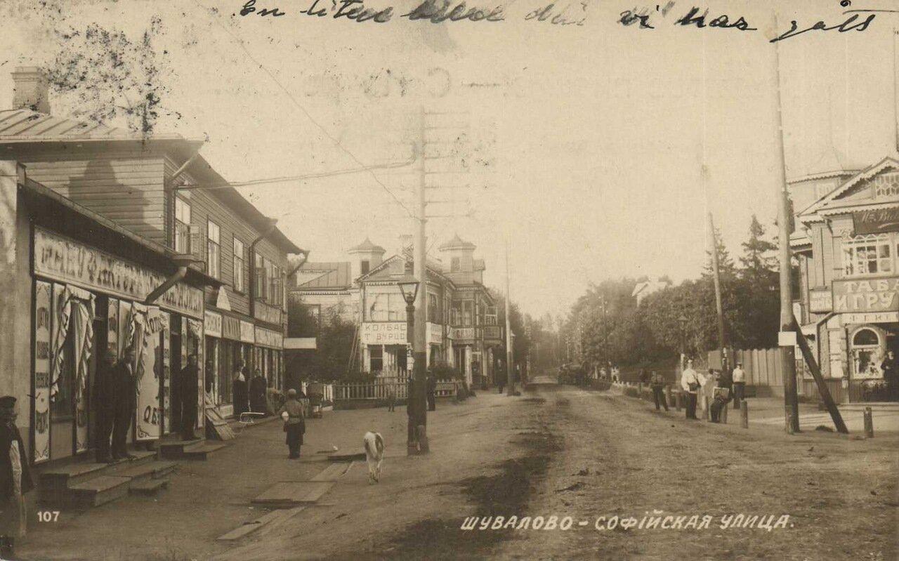 Шувалово. Софийская улица