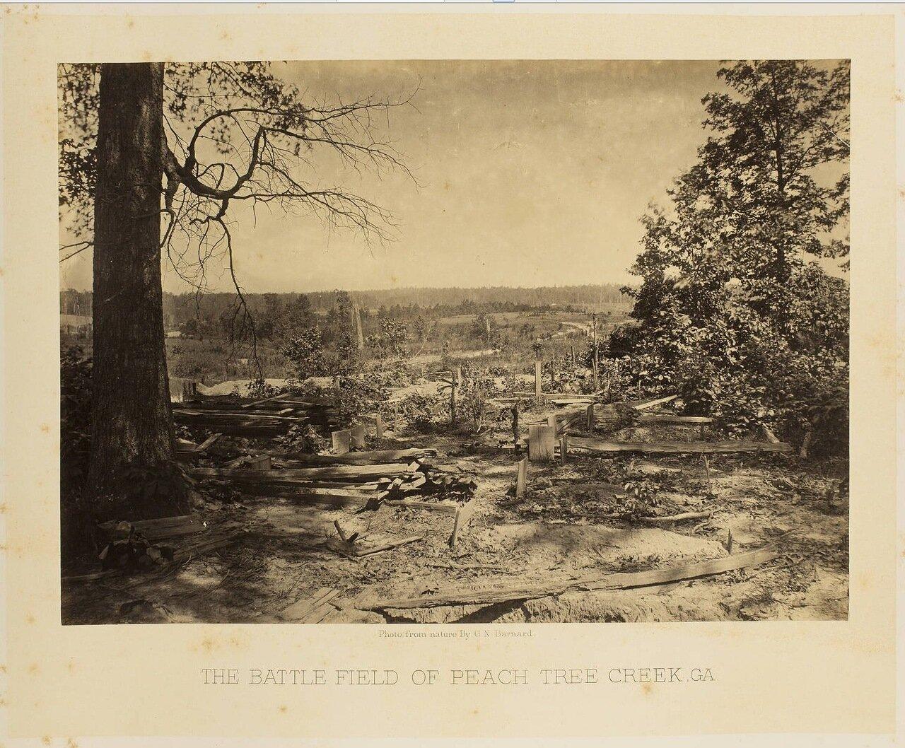 Поле битвы у Пичтри Крик. Джорджия