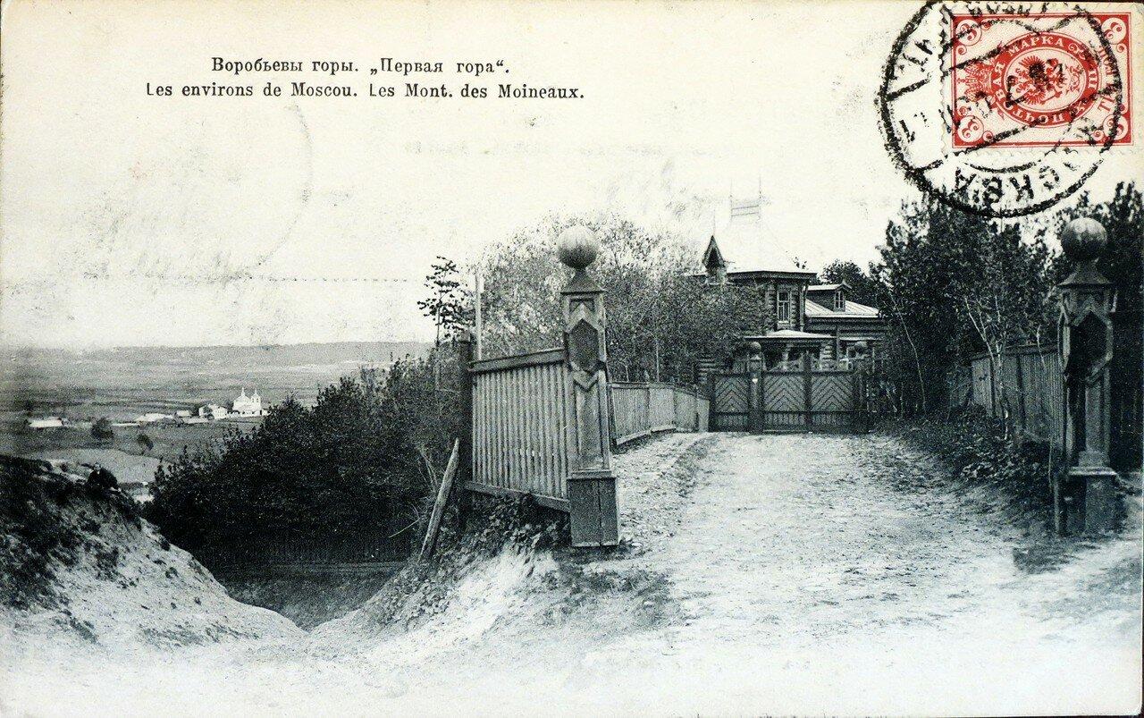 Окрестности Москвы. Воробьевы горы. «Первая гора»