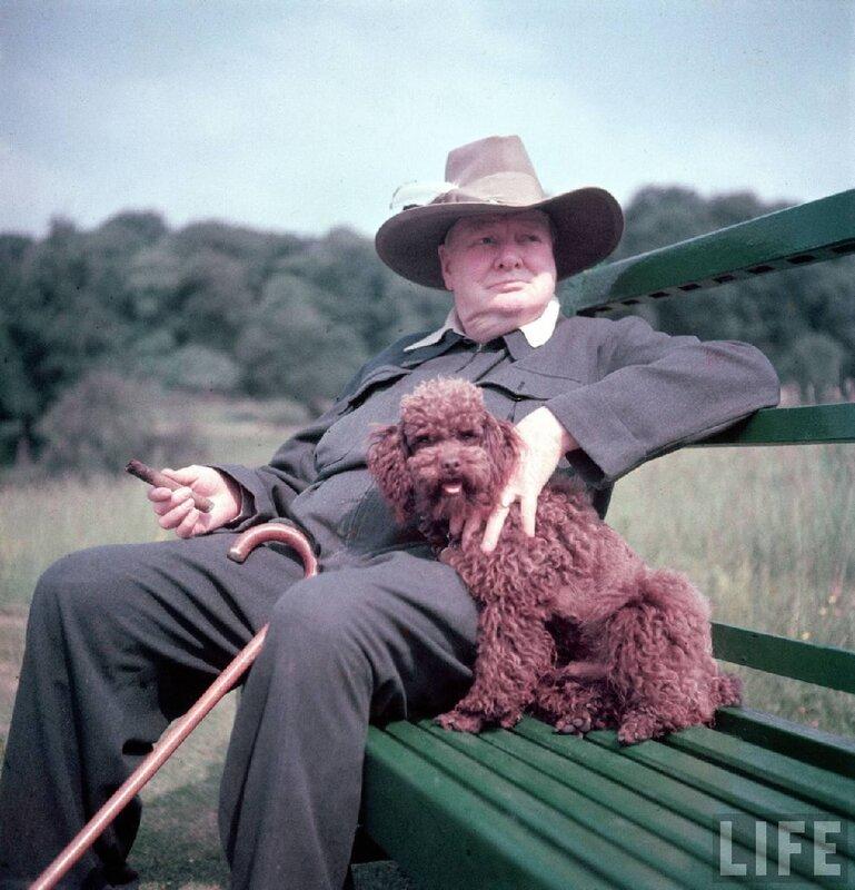 Уинстон Черчилль и его собачка, 1950 г, LIFE.Фотограф Марк Кауффман