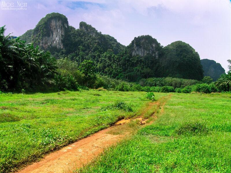 Дорога к парку Та Пом