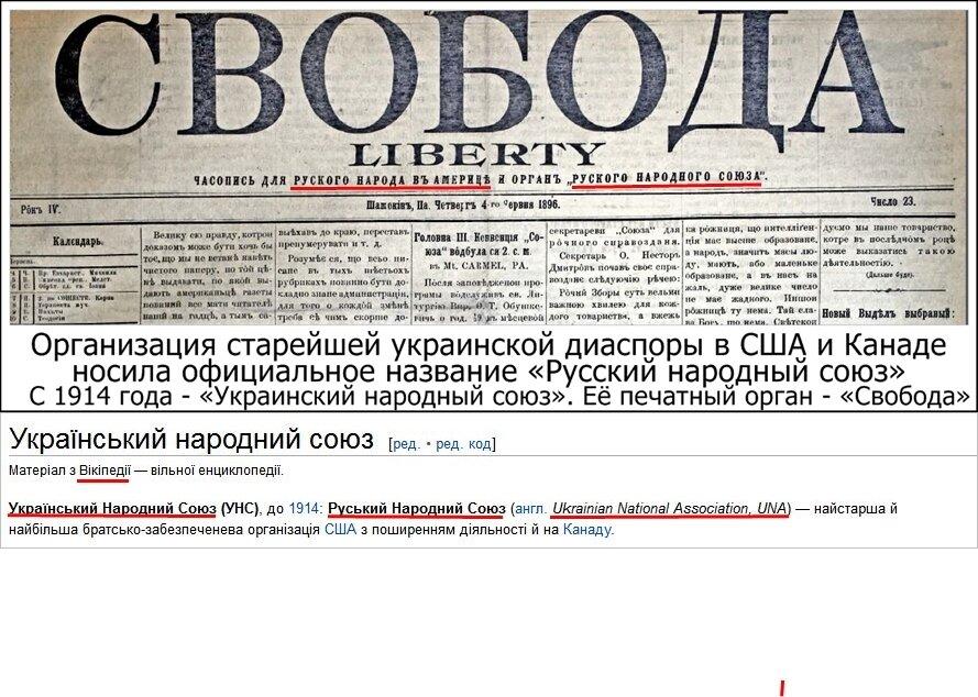 Писатель Винничук выиграл апелляционный суд у депутата Колесниченко - Цензор.НЕТ 9242