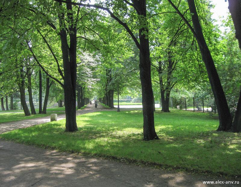 Московский парк Победы. Пройдя по центральной аллее, я направился изучать южную часть парка.