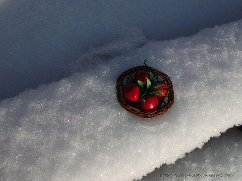 Корзиночка в снегу