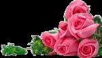 букет--72a_ab6da400_XL.png