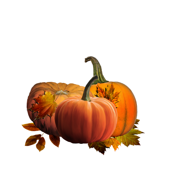 Autumn Owls Elements (56).png