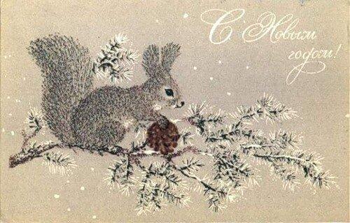 С Новым годом! Белочка с шишечкой открытка поздравление картинка