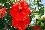 Липарийские острова, о. Липари