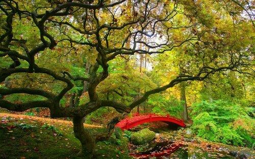 искусство пейзажной фотографии