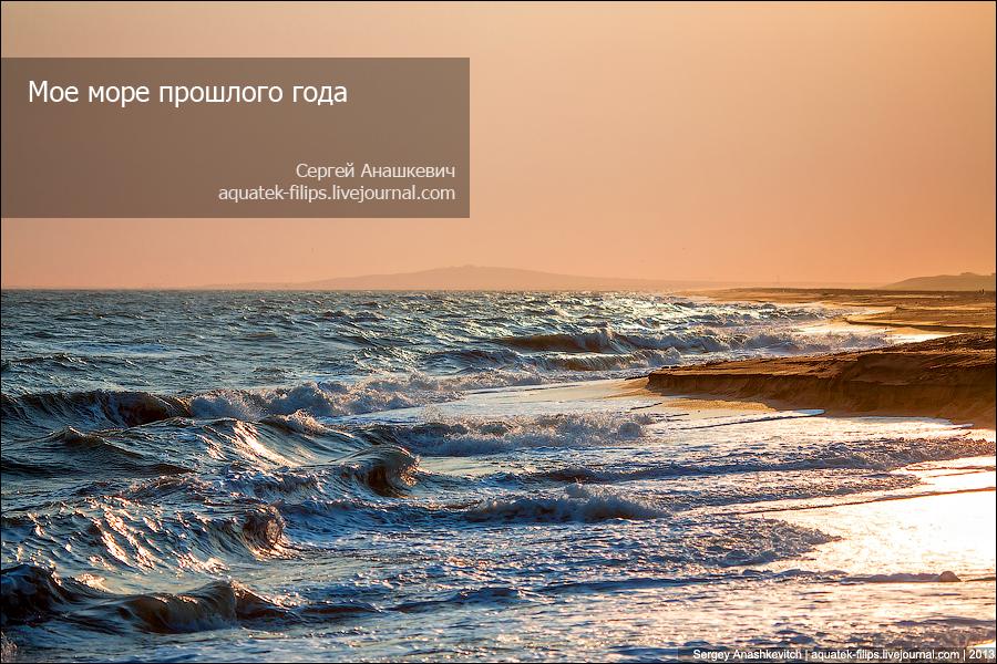 Топ море 2013