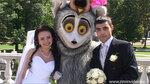 Свадьба с пришельцем
