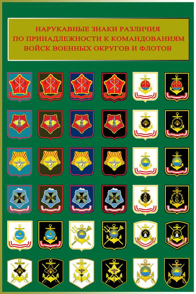 какие войска есть фото значков появления фотографии