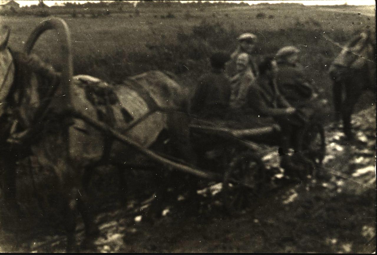 На телеге от станции Волочаевка в коммуну «Икор»