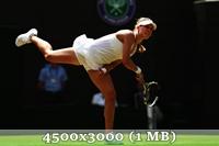 http://img-fotki.yandex.ru/get/9760/14186792.49/0_da421_eaec41e6_orig.jpg