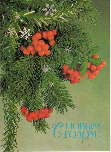 На елочке гроздья красной рябины. С Новым годом! открытки фото рисунки картинки поздравления