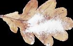 Snow Jewels