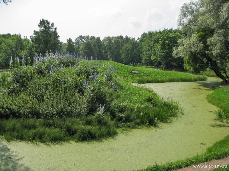 Московский парк Победы. В парке очень много воды. При этом озёра и каналы не скованы прямыми набережными, а наоборот, причудливо изгибаются как им угодно.