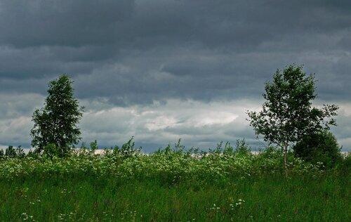 Ветер дует, небо хмурит.