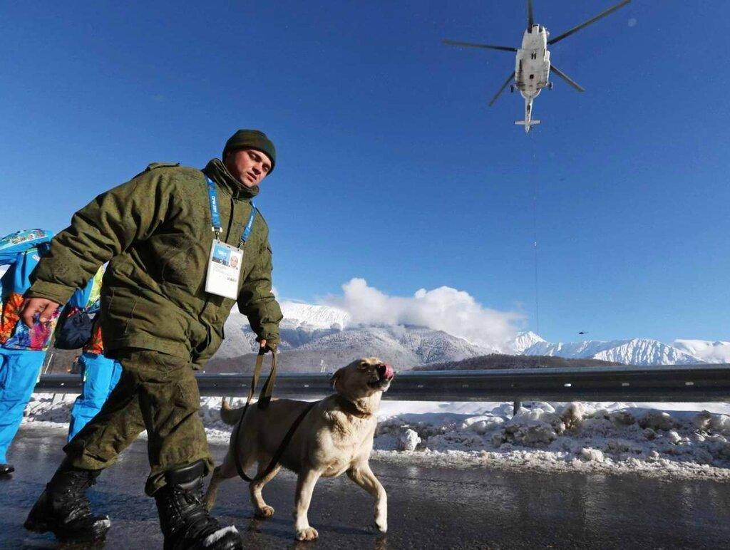 Кинологи со служебными собаками в круглосуточном режиме заняты поиском взрывчатых веществ (7)