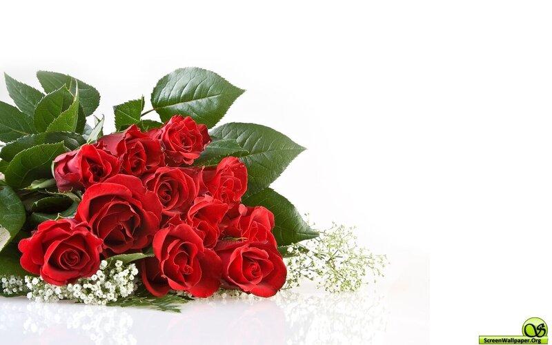 http://img-fotki.yandex.ru/get/9760/97761520.f3/0_80319_d760010_XL.jpg