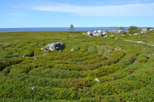 Заяцкий остров. Древний лабиринт