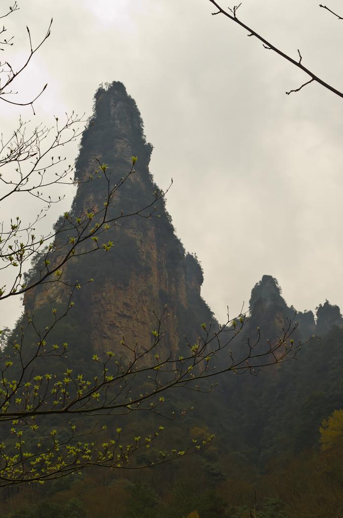 Фото 7. Первая весна в 2014 году. Горы национального парка Чжанцзяцзе. Отзыв об отдыхе в Китае